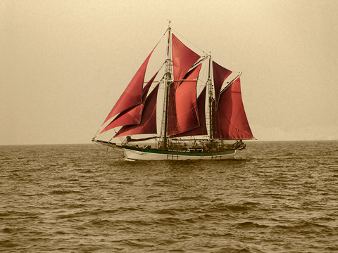 Traditional sailing vessel Vega